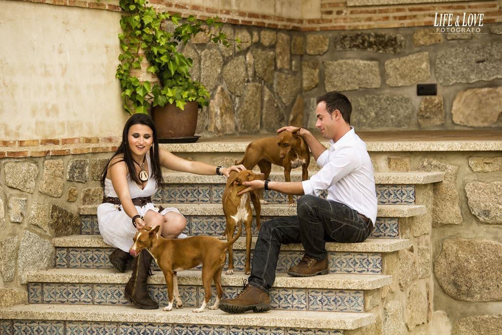 pareja con perros